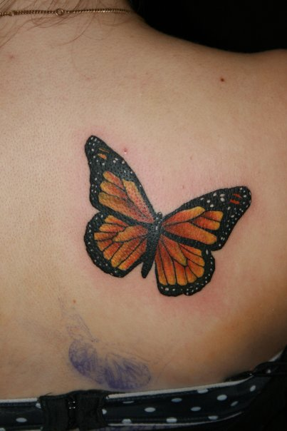 53 butterfly tattoo entertainmentmesh for Images of butterfly tattoos