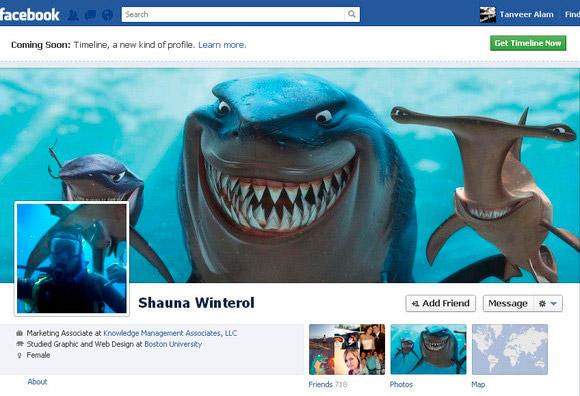 3 facebook timeline cover