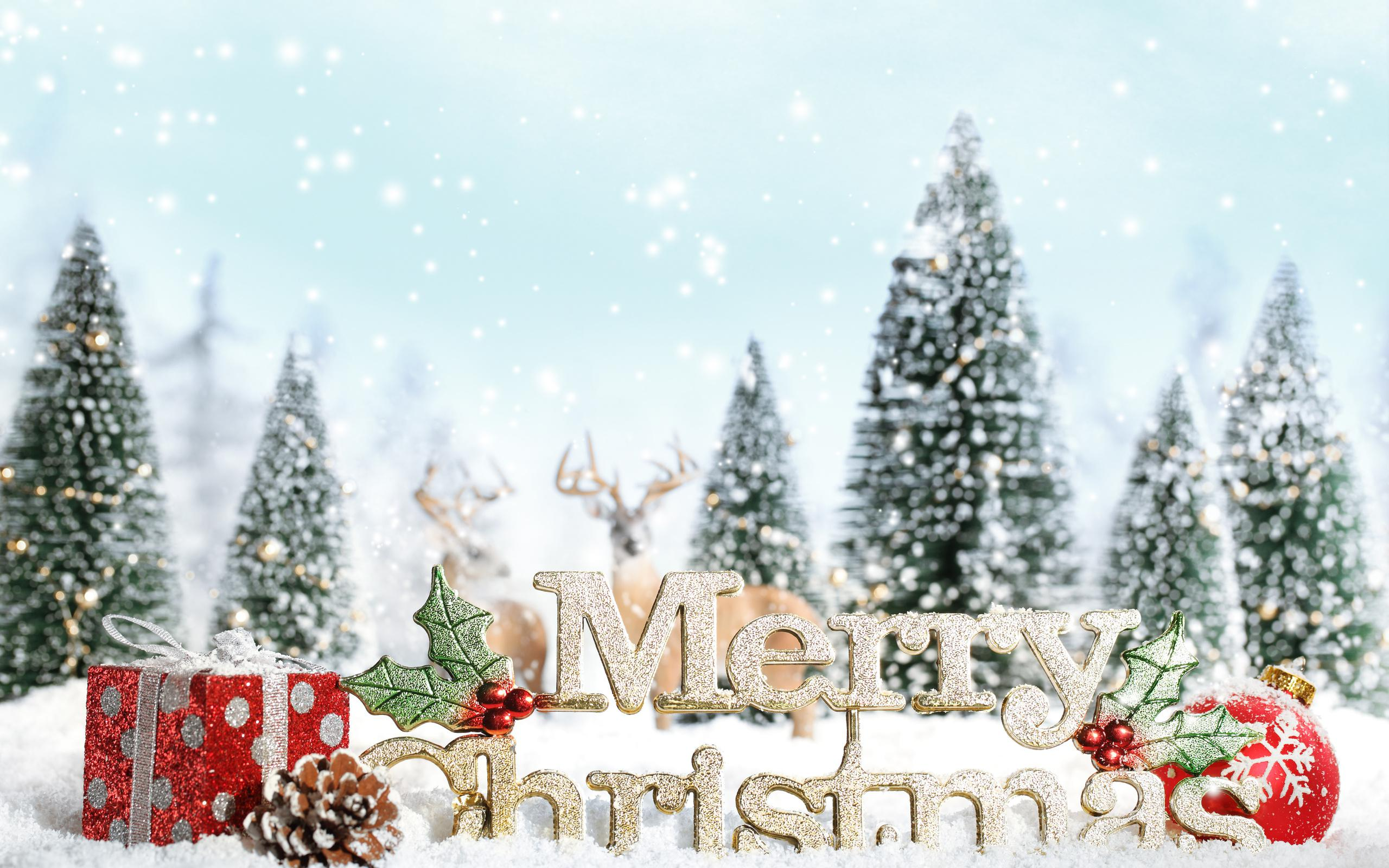 merry christmas wallpaper winter - photo #9