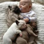 1 sleeping baby