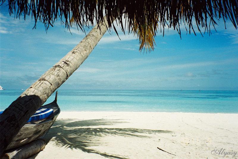 Beautiful Beach Photos 13