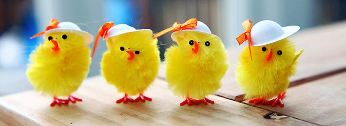 cool chicks fb photo