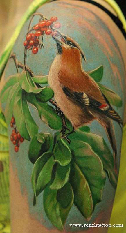 Realistic Bird tattoo