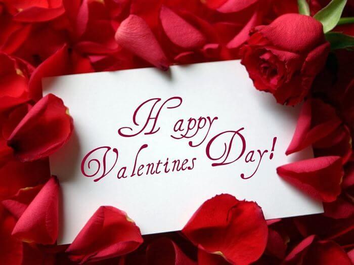 happy valentines day roses