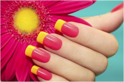 Two tone manicure with pink and yellow varnish mirror image of flower gerbera