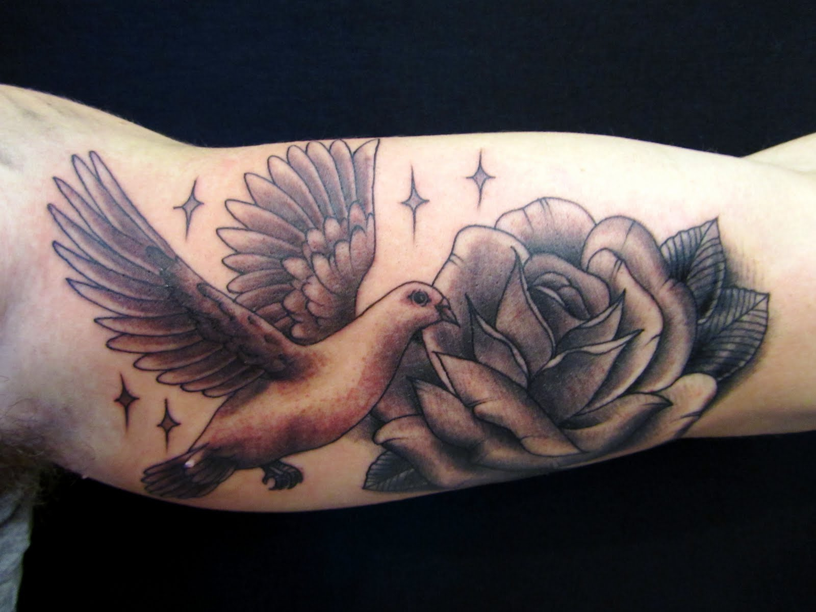 dove with rose tattoo on bicep