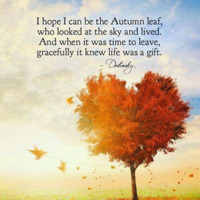 cute autumn quotes