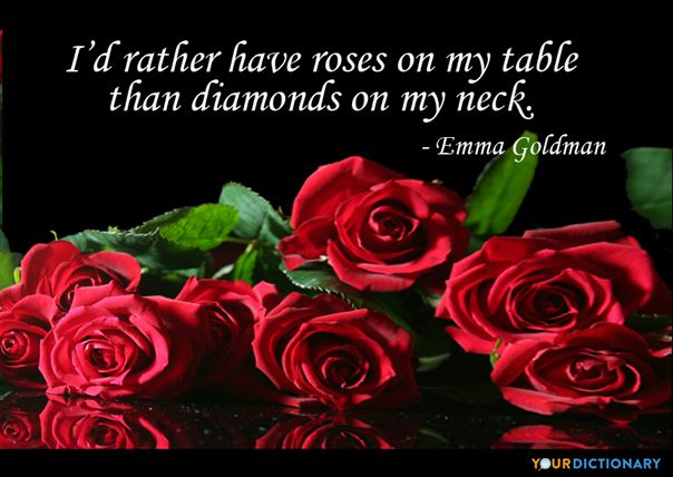 roses and love quote